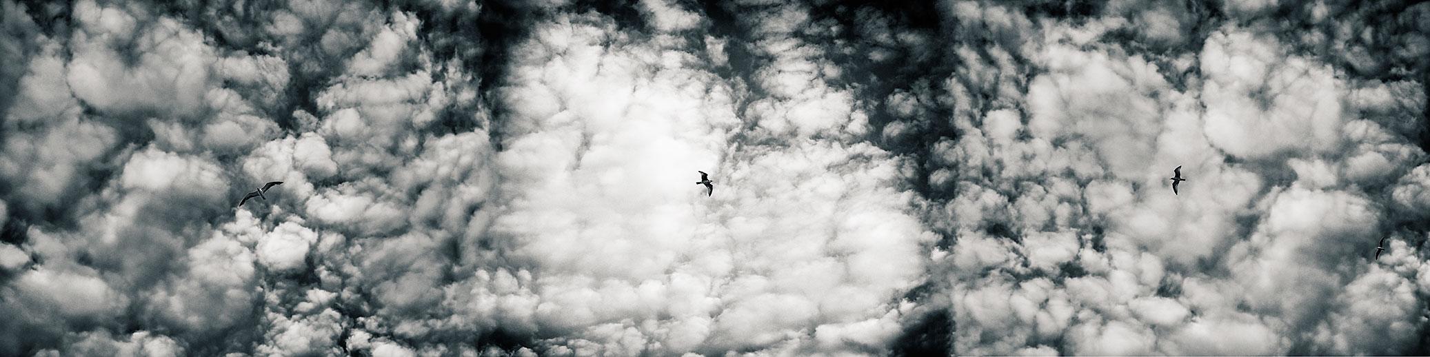 una nube negra