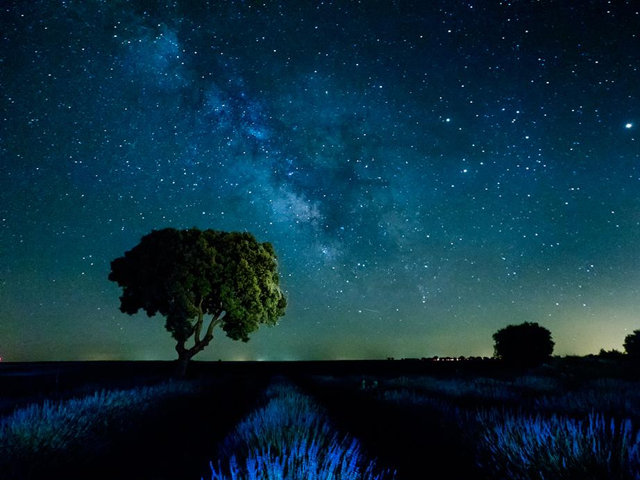 todas las estrellas del universo