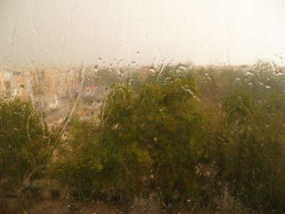 Apuntes para un día de lluvia